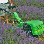 Walking Tractors Casorzo Macchine Agricole S.r.l.