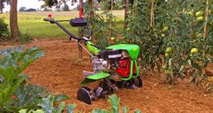 motozappe casorzo macchine agricole