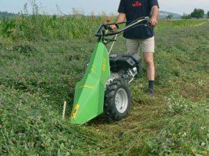 taglio erba con motofalciatrice golf-f | Casorzo Macchine Agricole
